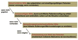 Abbildung 3: Patientenwille: Maßstab pflegerischen und medizinischen Handelns (Borasio et al. 2009,)